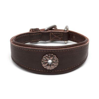 Windhundhalsband Whippet Fiore
