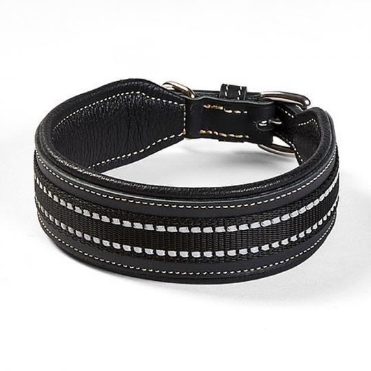 Hundehalsband Bodyguard schwarz