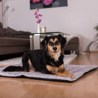 Hundedecke Mandala (rutschfest)
