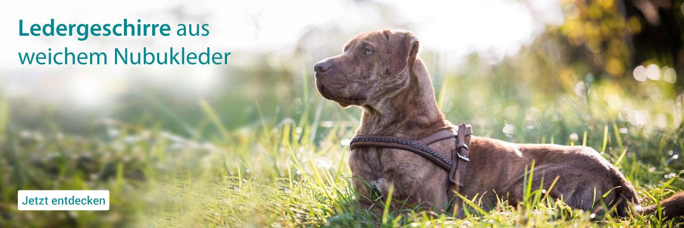 DogsFinest Leder-Geschirre